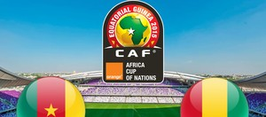 Cameroon - Guinea Highlights